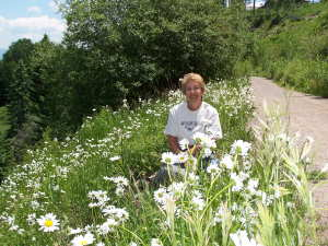 Barb in Field of Daisies