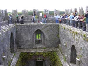 Waiting to kiss Blarney Stone