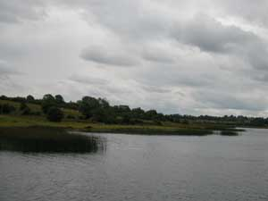 Banks of Shannon River