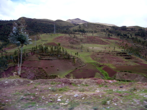 Fields in Cusco Highlands